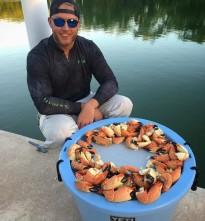 stone-crab-phild_hughes