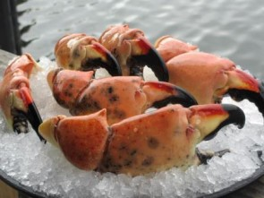stone-crabs-on-ice
