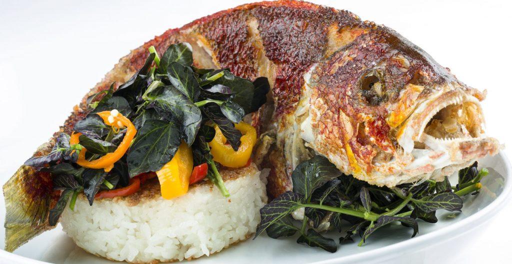 15 best tasting fish in the florida keys islamorada for Best tasting fish